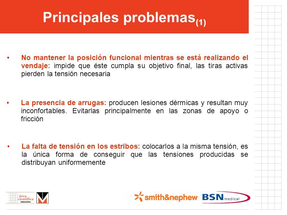 Principales problemas(1)
