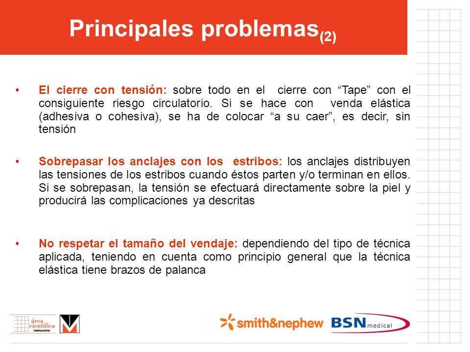 Principales problemas(2)