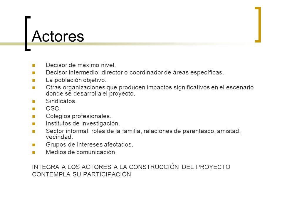 Actores Decisor de máximo nivel.