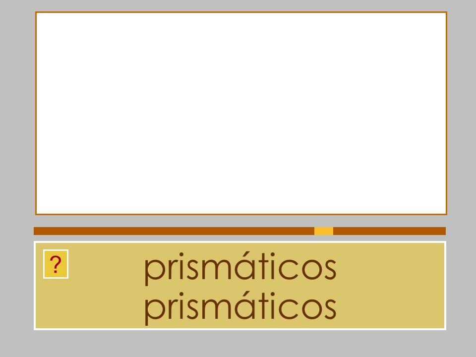 prismáticos prismáticos