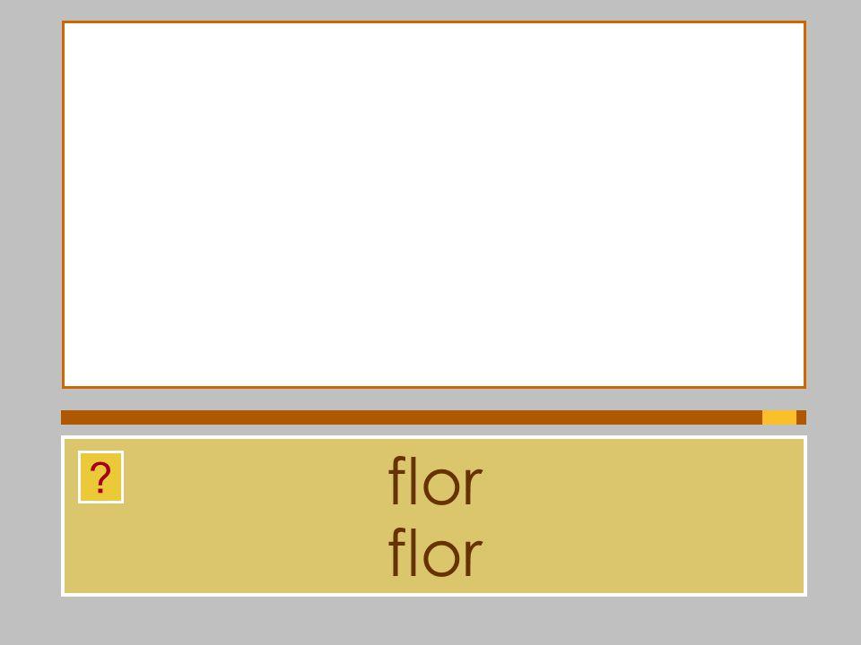 flor flor