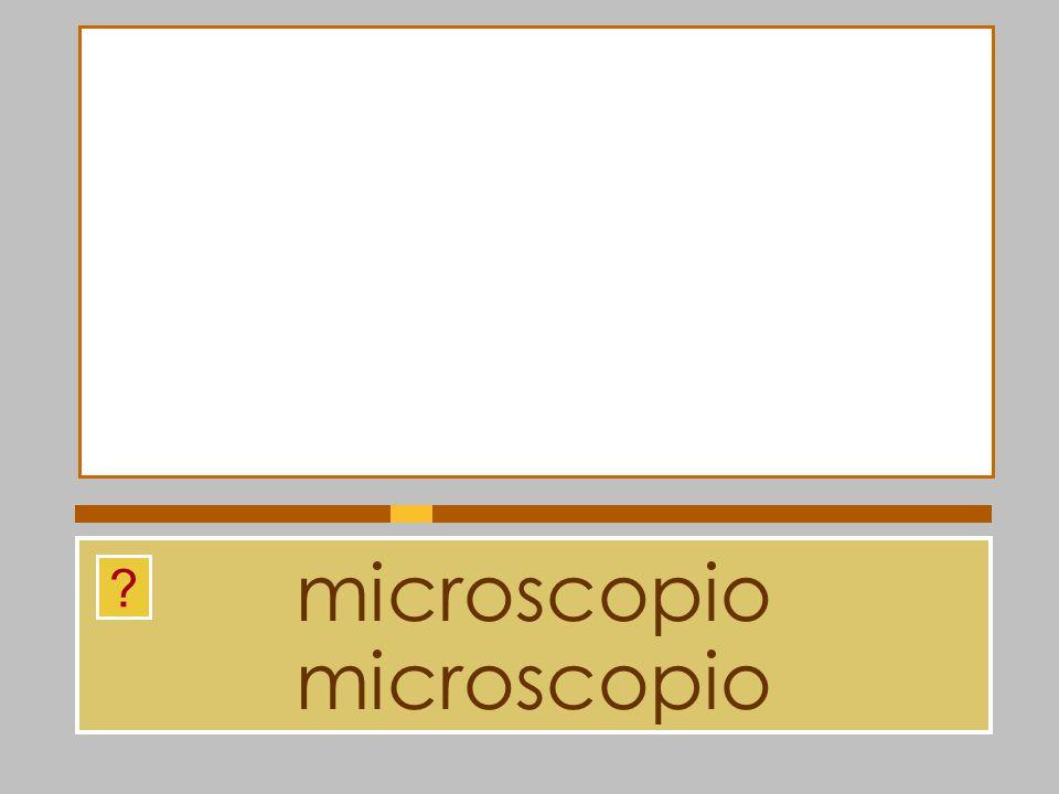 microscopio microscopio