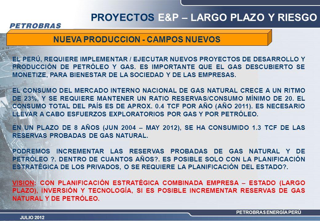 PROYECTOS E&P – LARGO PLAZO Y RIESGO