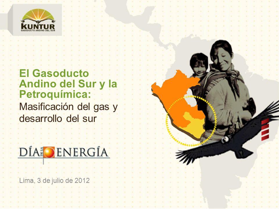 Andino del Sur y la Petroquímica: