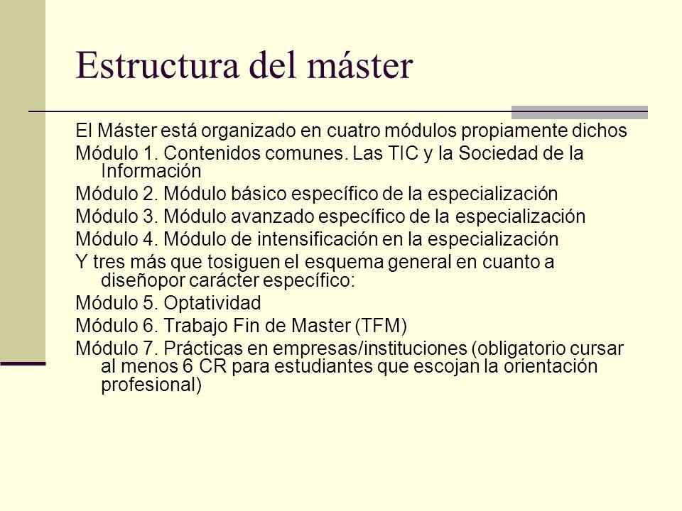 Estructura del máster