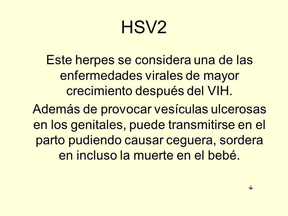 HSV2 Este herpes se considera una de las enfermedades virales de mayor crecimiento después del VIH.
