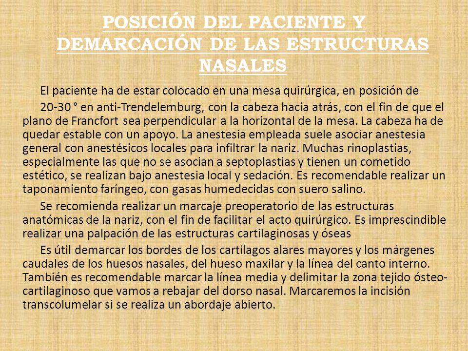 POSICIÓN DEL PACIENTE Y DEMARCACIÓN DE LAS ESTRUCTURAS NASALES