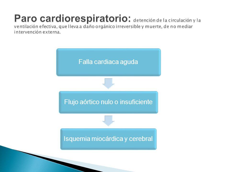 Paro cardiorespiratorio: detención de la circulación y la ventilación efectiva, que lleva a daño orgánico irreversible y muerte, de no mediar intervención externa.
