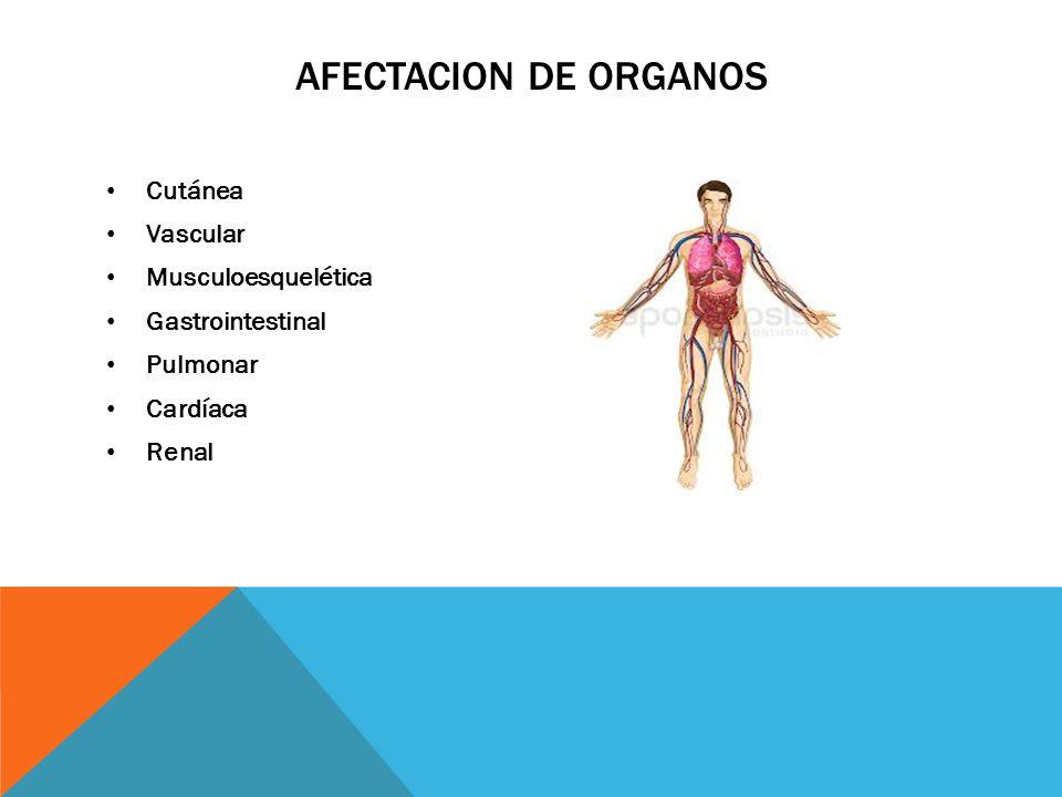 Afectacion de organos Cutánea Vascular Musculoesquelética