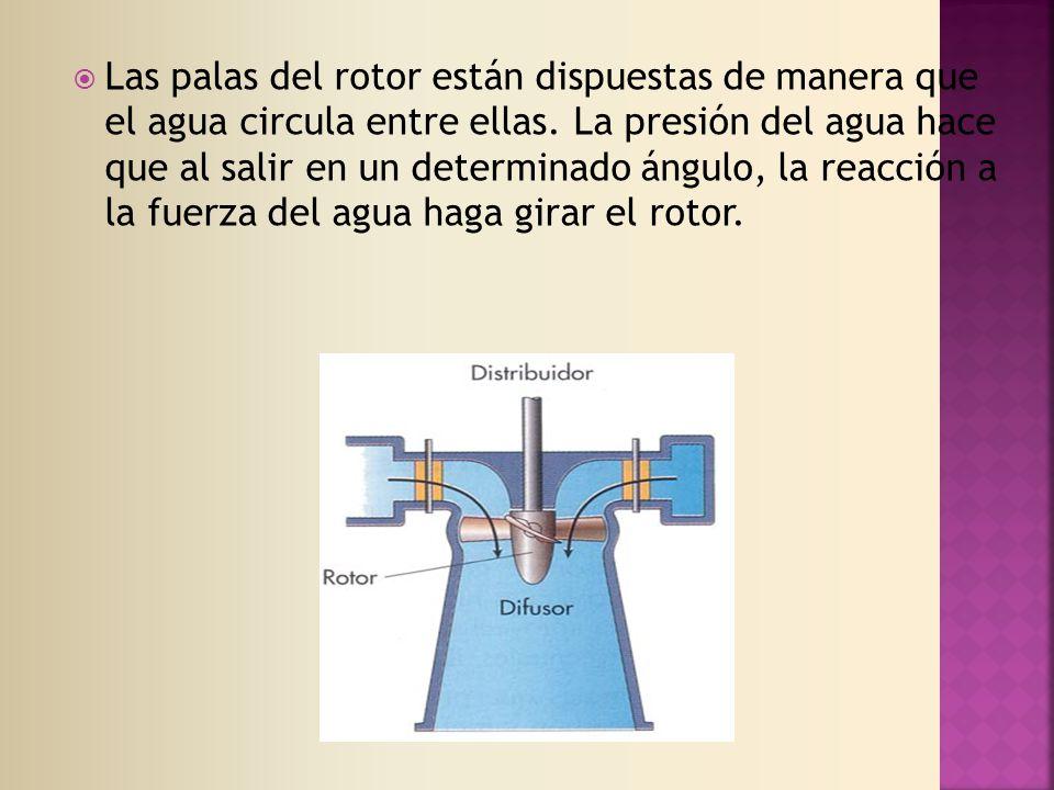 Las palas del rotor están dispuestas de manera que el agua circula entre ellas.