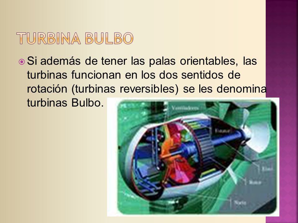 TURBINA BULBO