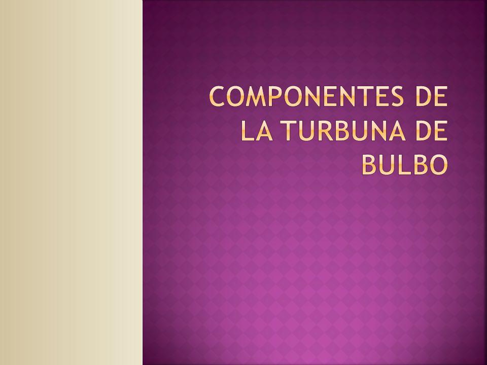 COMPONENTES DE LA TURBUNA DE BULBO