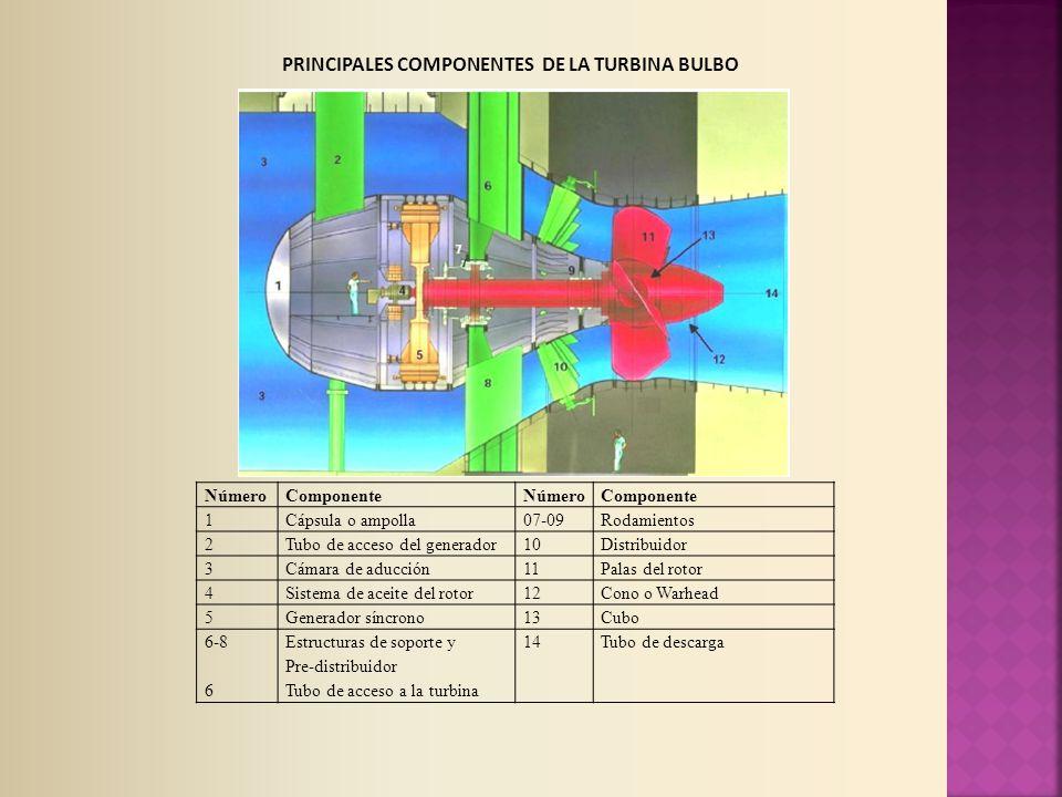 PRINCIPALES COMPONENTES DE LA TURBINA BULBO