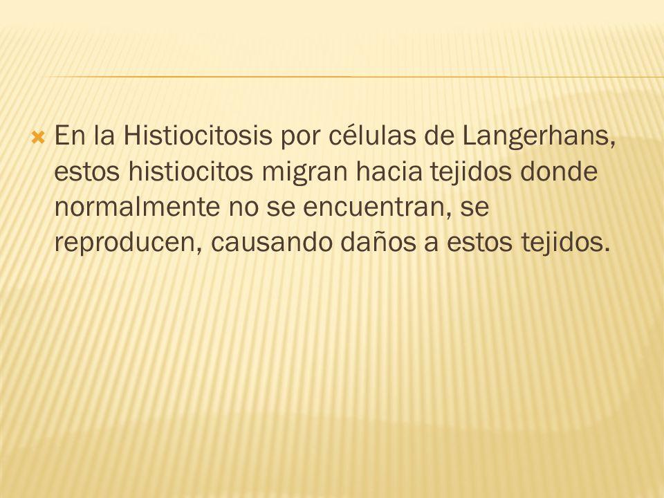 En la Histiocitosis por células de Langerhans, estos histiocitos migran hacia tejidos donde normalmente no se encuentran, se reproducen, causando daños a estos tejidos.