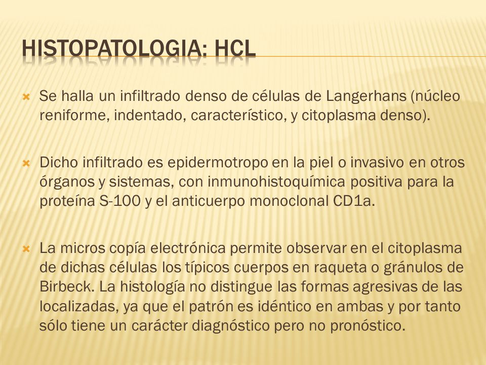Histopatologia: HCL Se halla un infiltrado denso de células de Langerhans (núcleo reniforme, indentado, característico, y citoplasma denso).