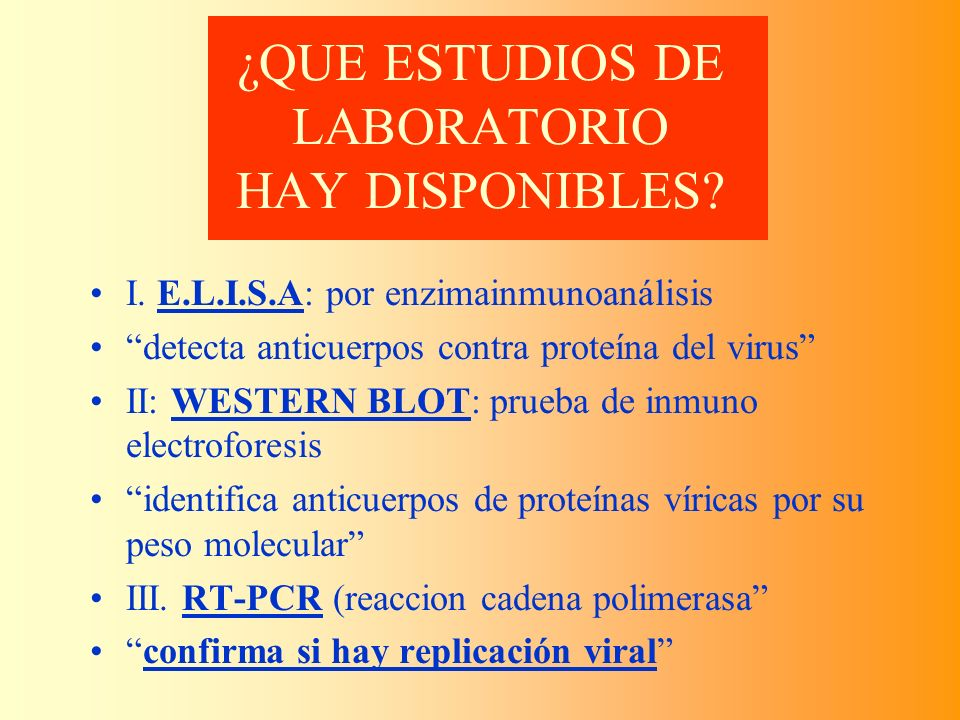 ¿QUE ESTUDIOS DE LABORATORIO HAY DISPONIBLES