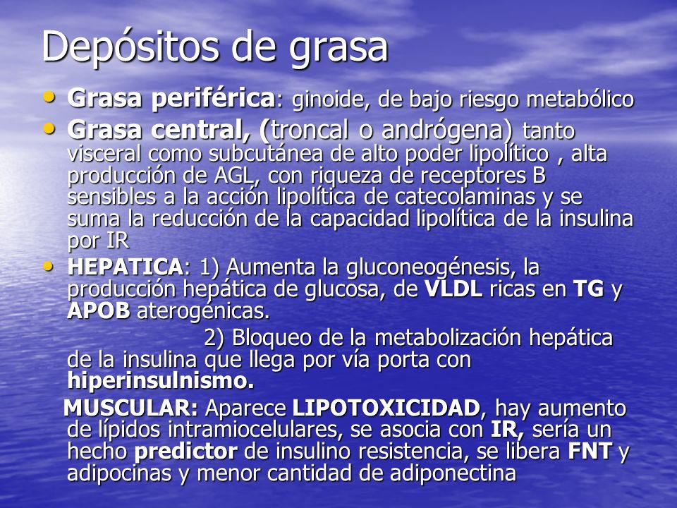 Depósitos de grasa Grasa periférica: ginoide, de bajo riesgo metabólico.