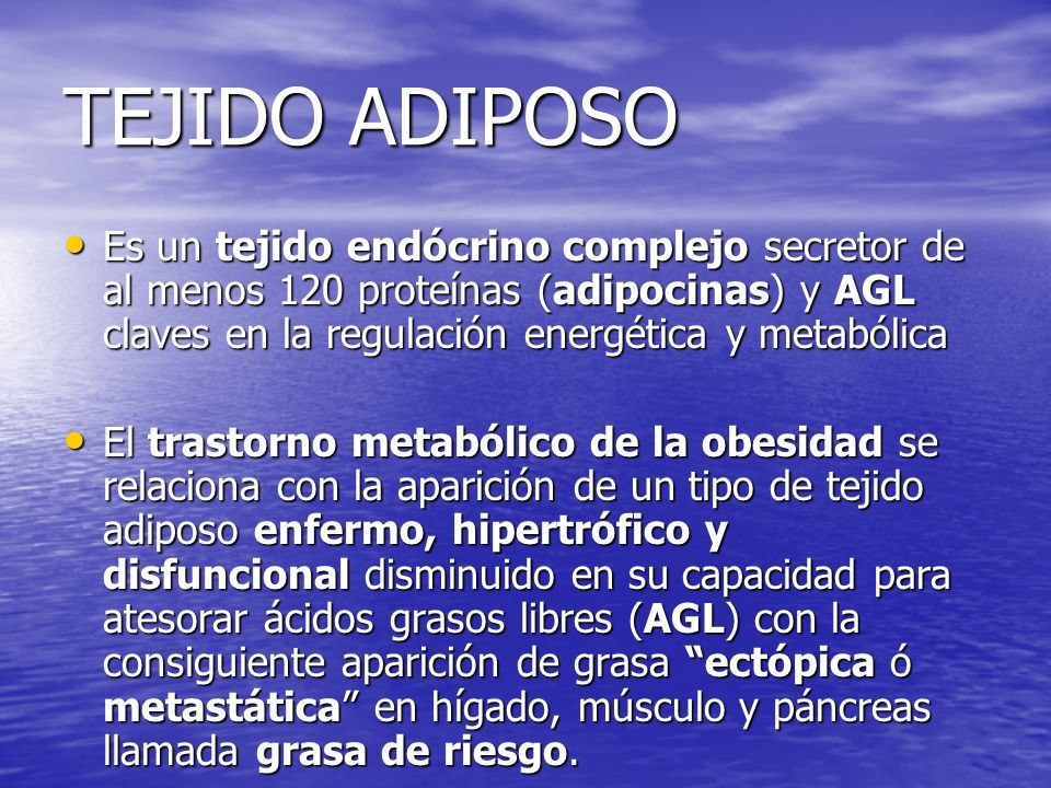 TEJIDO ADIPOSO Es un tejido endócrino complejo secretor de al menos 120 proteínas (adipocinas) y AGL claves en la regulación energética y metabólica.