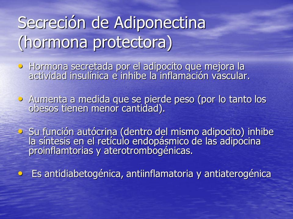 Secreción de Adiponectina (hormona protectora)