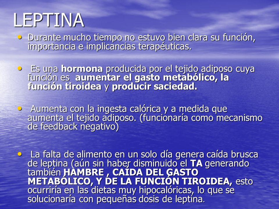 LEPTINA Durante mucho tiempo no estuvo bien clara su función, importancia e implicancias terapéuticas.