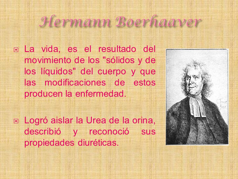 Hermann Boerhaaver