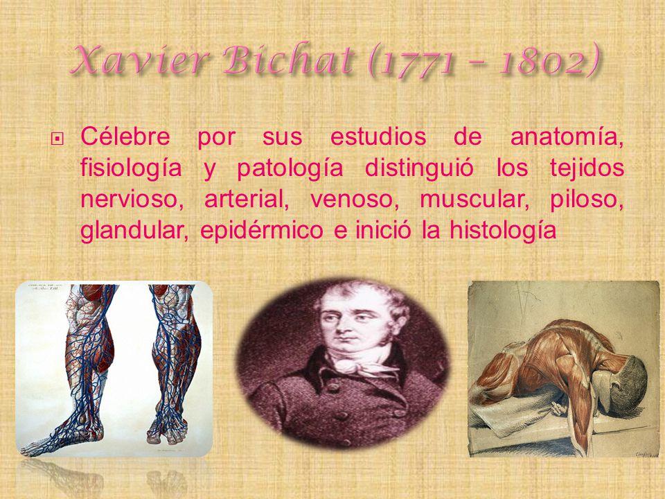 Xavier Bichat (1771 – 1802)