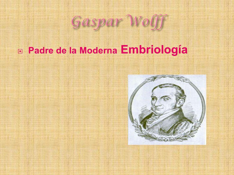 Gaspar Wolff Padre de la Moderna Embriología