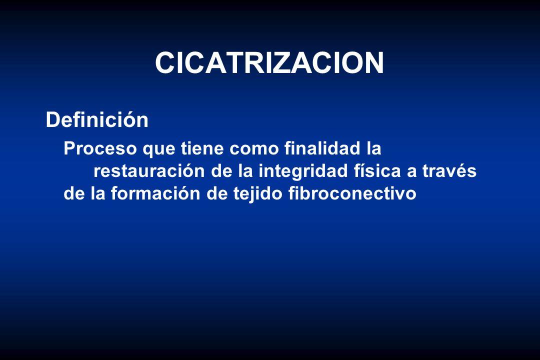 CICATRIZACION Definición