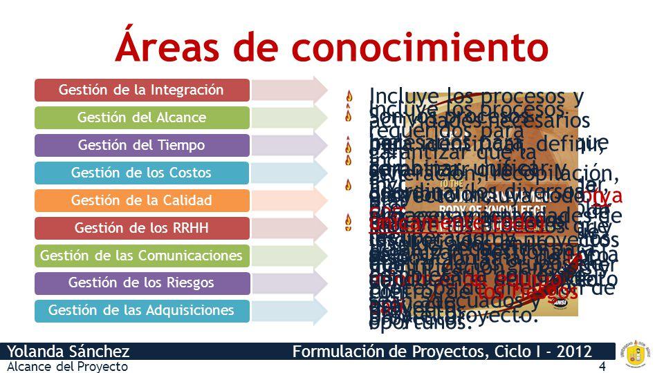 Áreas de conocimiento Gestión de la Integración.