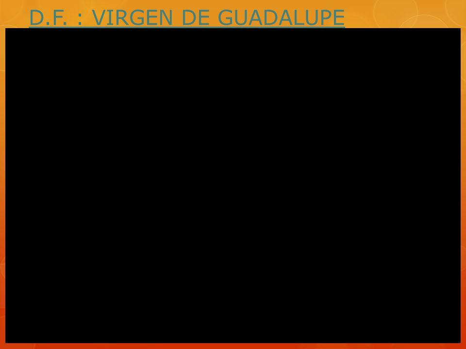 D.F. : VIRGEN DE GUADALUPE