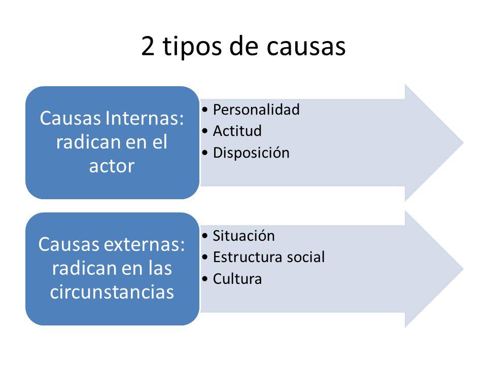 2 tipos de causas Causas Internas: radican en el actor