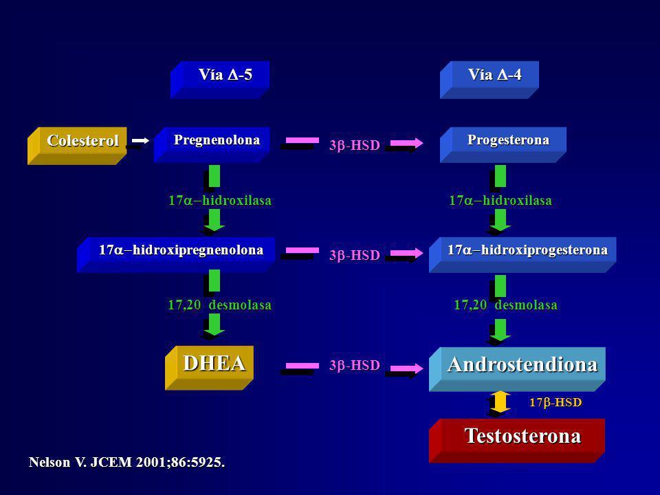 17a-hidroxipregnenolona 17a-hidroxiprogesterona