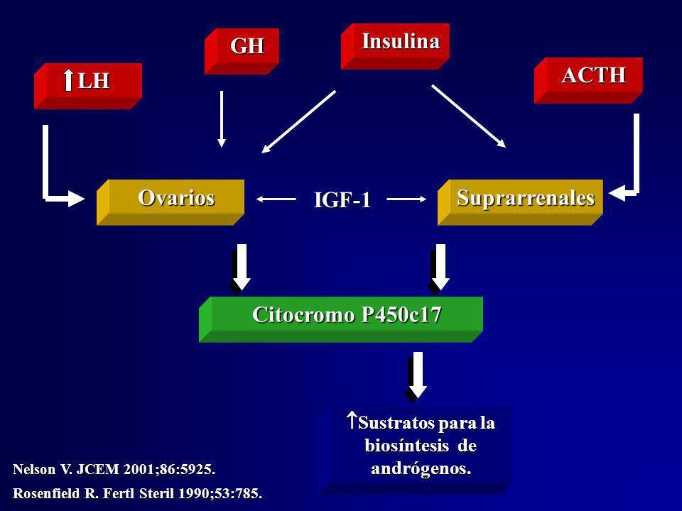 Sustratos para la biosíntesis de andrógenos.