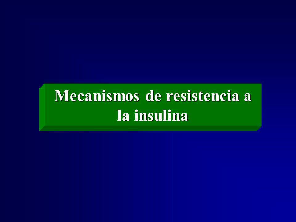 Mecanismos de resistencia a la insulina