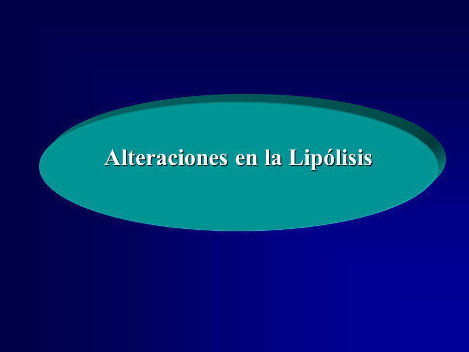 Alteraciones en la Lipólisis