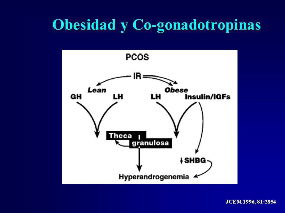 Obesidad y Co-gonadotropinas