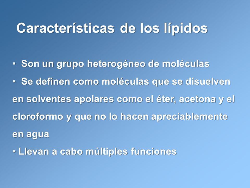 Características de los lípidos
