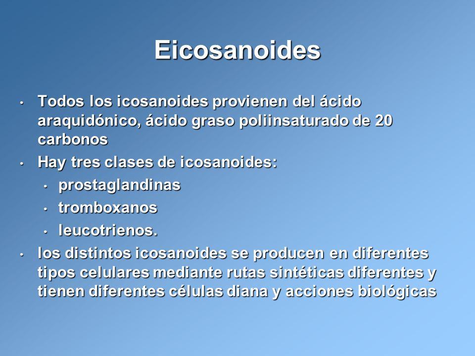 Eicosanoides Todos los icosanoides provienen del ácido araquidónico, ácido graso poliinsaturado de 20 carbonos.