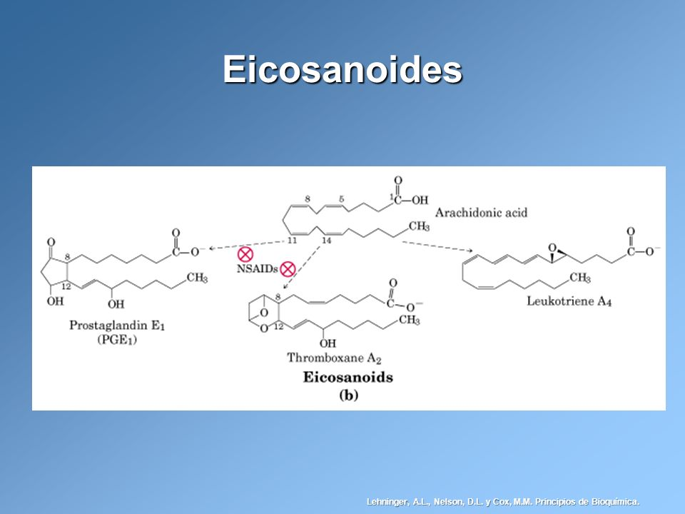 Eicosanoides Lehninger, A.L., Nelson, D.L. y Cox, M.M. Principios de Bioquímica.