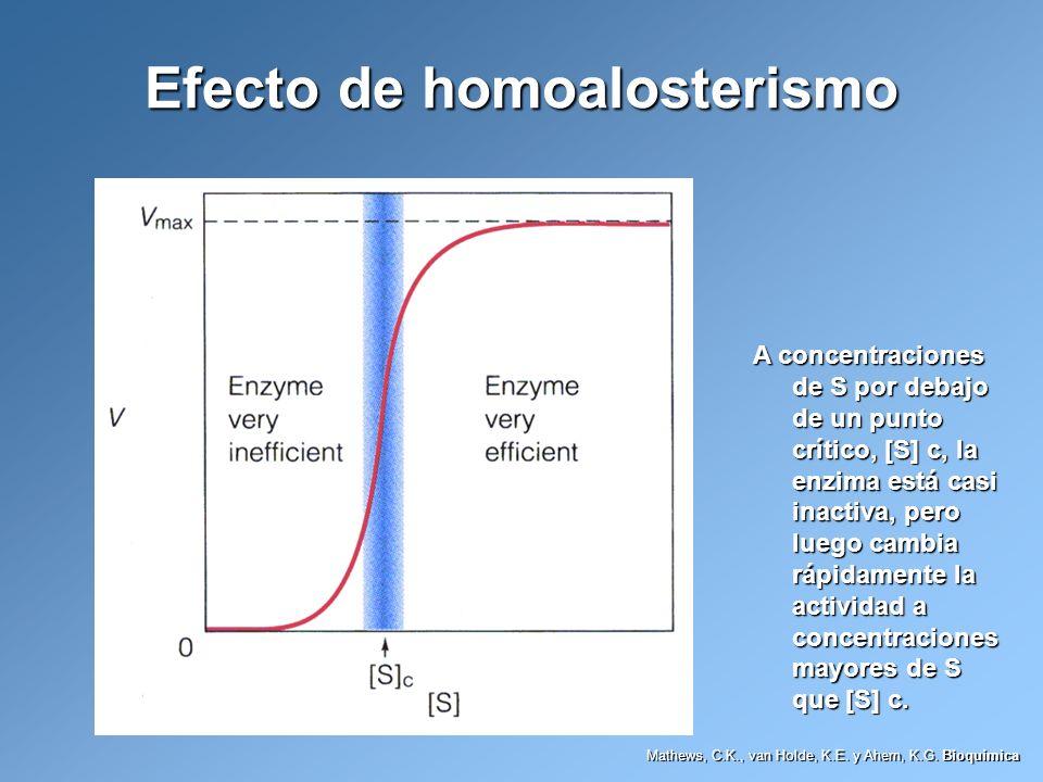 Efecto de homoalosterismo