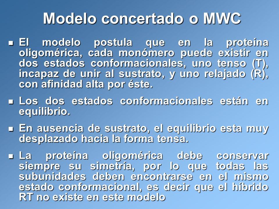 Modelo concertado o MWC