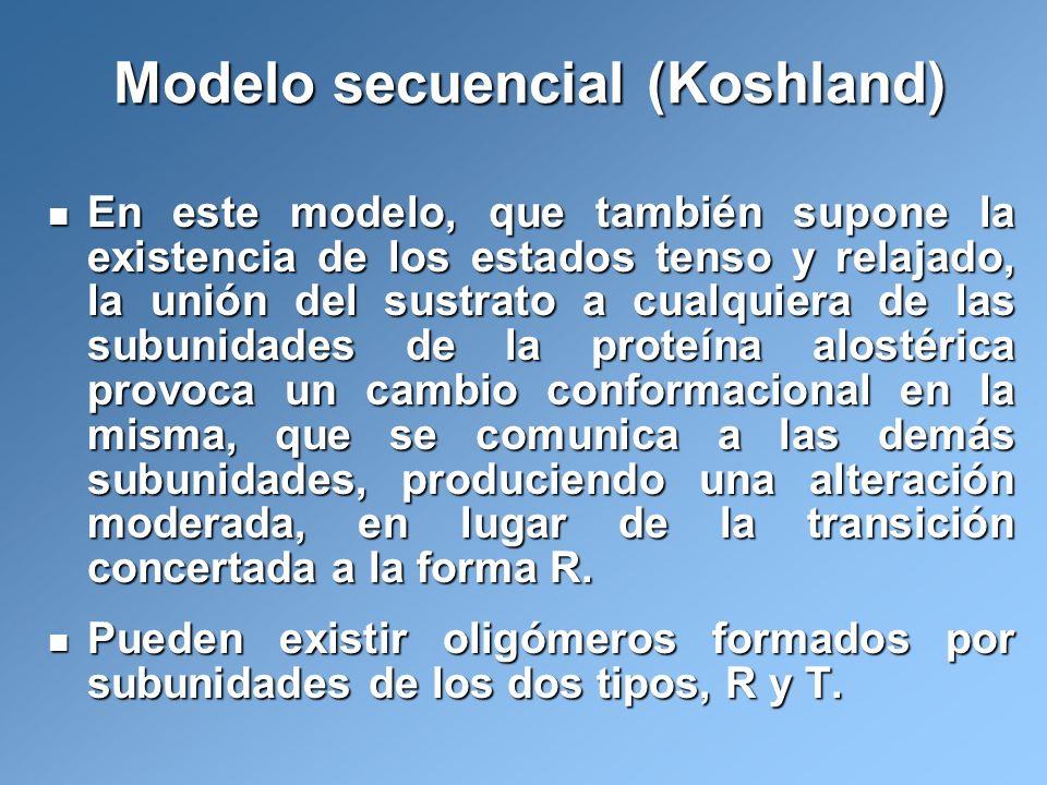 Modelo secuencial (Koshland)