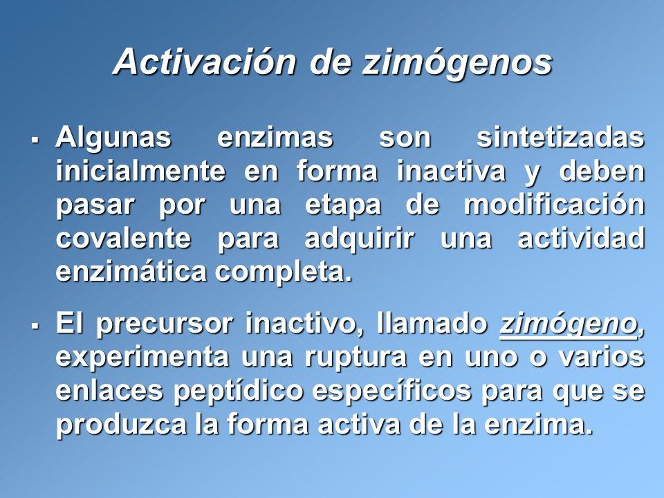 Activación de zimógenos