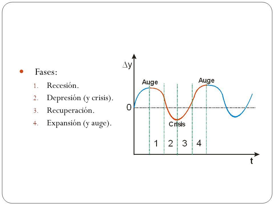 Fases: Recesión. Depresión (y crisis). Recuperación.