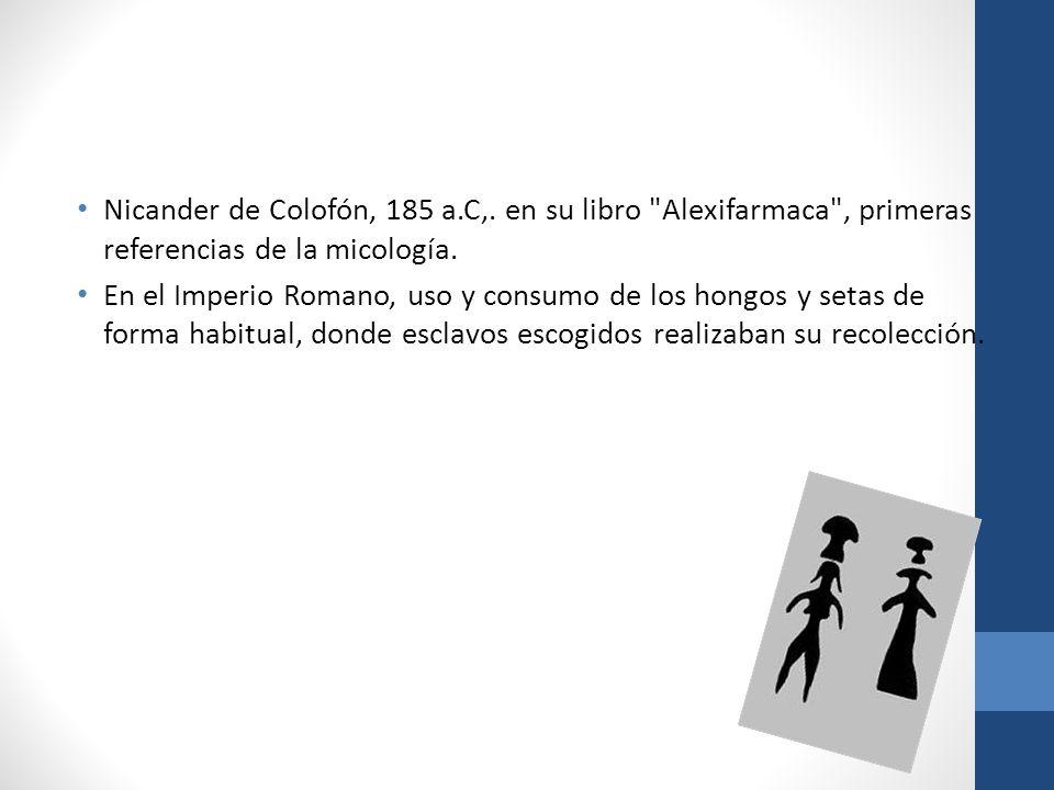 Nicander de Colofón, 185 a.C,. en su libro Alexifarmaca , primeras referencias de la micología.