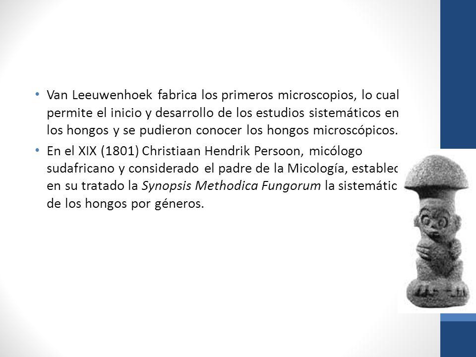 Van Leeuwenhoek fabrica los primeros microscopios, lo cual permite el inicio y desarrollo de los estudios sistemáticos en los hongos y se pudieron conocer los hongos microscópicos.