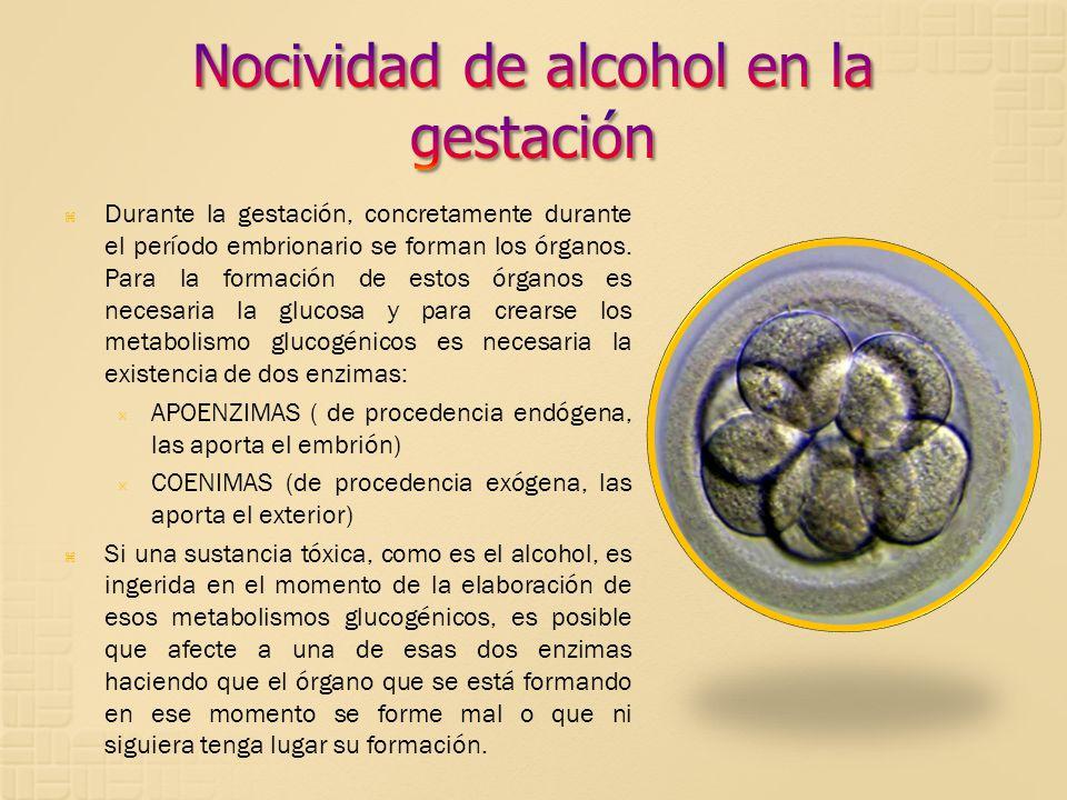 Nocividad de alcohol en la gestación