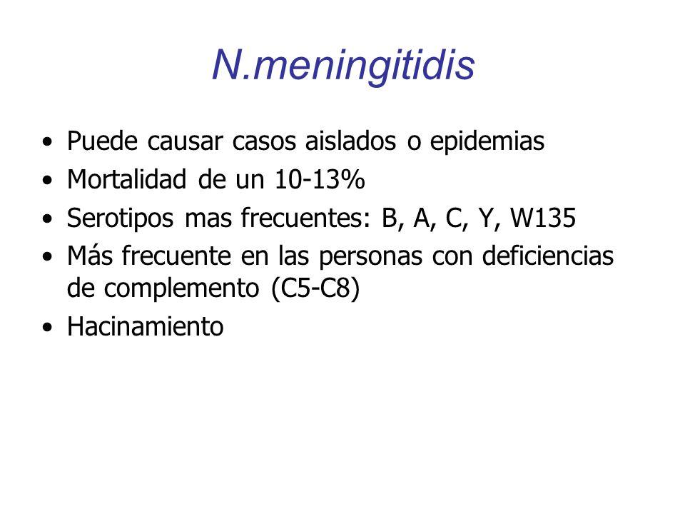 N.meningitidis Puede causar casos aislados o epidemias