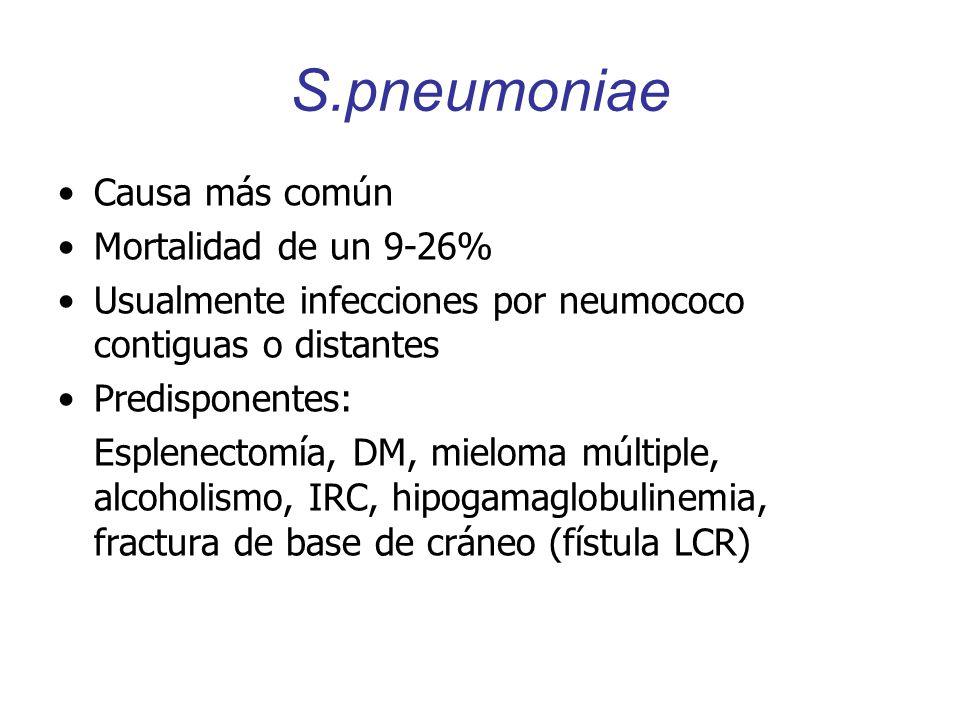 S.pneumoniae Causa más común Mortalidad de un 9-26%