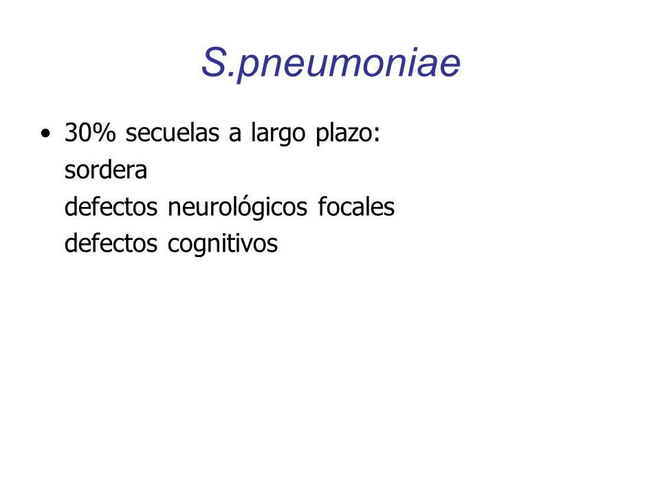S.pneumoniae 30% secuelas a largo plazo: sordera